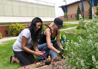 Sustainability2_Gardening