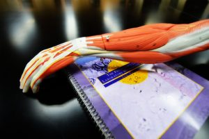 medical book and hand